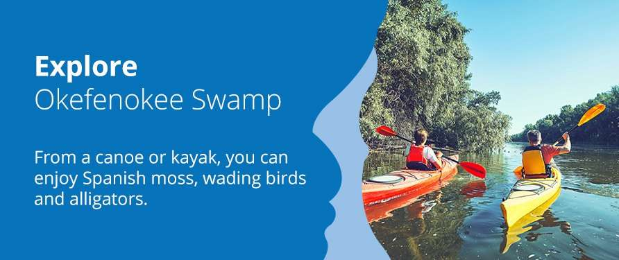 Explore Okefenokee Swamp